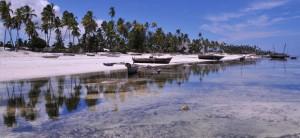 paysages d'Unguja et ses îlots