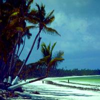 Îles de Zanzibar