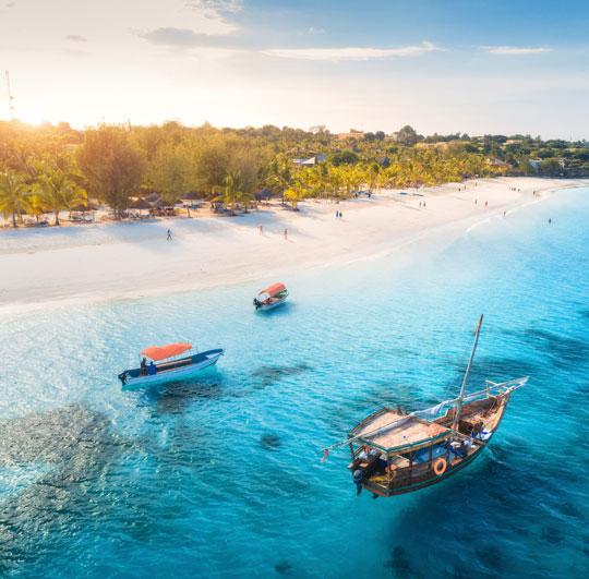 Zanzibar entre natures tropicales & plages immaculées